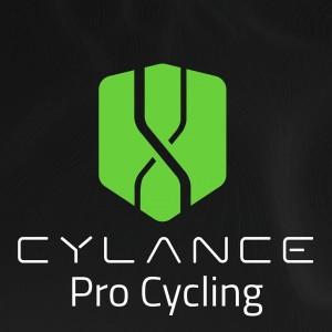 Logotipo del equipo